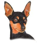 min pin by blackleafstudio