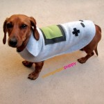 Gameboy Dog Costume by YoungUrbanPuppy