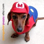 Mario Dog Costume by YoungUrbanPuppy